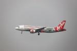 A350XWB-HNDさんが、台湾桃園国際空港で撮影したエアアジア A320-216の航空フォト(写真)