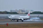 you55さんが、伊丹空港で撮影したJALエクスプレス 737-846の航空フォト(写真)