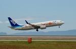 FRTさんが、岩国空港で撮影した全日空 737-881の航空フォト(写真)