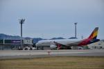 you55さんが、米子空港で撮影したアシアナ航空 A321-231の航空フォト(写真)