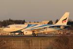 多楽さんが、成田国際空港で撮影したバンコクエアウェイズ A319-131の航空フォト(写真)