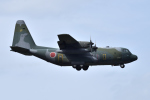 sepia2016さんが、横田基地で撮影した航空自衛隊 C-130H Herculesの航空フォト(写真)