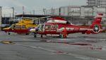 C.Hiranoさんが、神戸ヘリポートで撮影した京都市消防航空隊 AS365N3 Dauphin 2の航空フォト(写真)