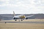 シャークレットさんが、新千歳空港で撮影したスクート・タイガーエア 787-8 Dreamlinerの航空フォト(写真)