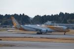 鷹輝@SKY TEAMさんが、成田国際空港で撮影したスクート 787-9の航空フォト(写真)