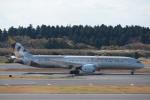 鷹輝@SKY TEAMさんが、成田国際空港で撮影したエティハド航空 787-9の航空フォト(写真)