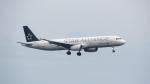 誘喜さんが、フランクフルト国際空港で撮影したターキッシュ・エアラインズ A321-231の航空フォト(写真)