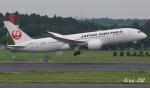 RINA-200さんが、成田国際空港で撮影した日本航空 787-8 Dreamlinerの航空フォト(写真)