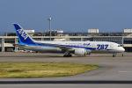 はるかのパパさんが、新石垣空港で撮影した全日空 787-8 Dreamlinerの航空フォト(写真)