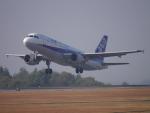 ムネキンさんが、広島空港で撮影した全日空 A320-211の航空フォト(写真)