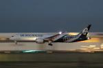 多楽さんが、成田国際空港で撮影したニュージーランド航空 787-9の航空フォト(写真)