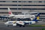 ハピネスさんが、羽田空港で撮影したスカイマーク 737-86Nの航空フォト(写真)