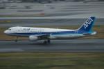 はやたいさんが、羽田空港で撮影した全日空 A320-211の航空フォト(写真)