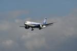 beimax55さんが、羽田空港で撮影した全日空 767-381/ERの航空フォト(写真)