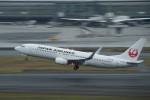 はやたいさんが、羽田空港で撮影したJALエクスプレス 737-846の航空フォト(写真)