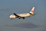beimax55さんが、羽田空港で撮影した日本航空 767-346/ERの航空フォト(写真)