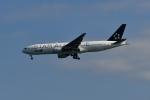 beimax55さんが、羽田空港で撮影した全日空 777-281の航空フォト(写真)