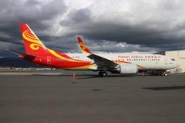 JRF spotterさんが、ダニエル・K・イノウエ国際空港で撮影した海南航空 737-8-MAXの航空フォト(飛行機 写真・画像)
