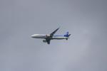 kix大好きカズチャマンさんが、伊丹空港で撮影した全日空 A321-272Nの航空フォト(写真)
