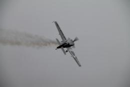 RAOUさんが、岐阜基地で撮影したパスファインダー EA-300SCの航空フォト(写真)