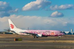Cygnus00さんが、新千歳空港で撮影した中国国際航空 737-86Nの航空フォト(写真)