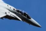 YAMMARさんが、岐阜基地で撮影した航空自衛隊 F-15DJ Eagleの航空フォト(写真)