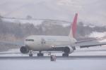 元青森人さんが、函館空港で撮影した日本航空 767-346の航空フォト(写真)