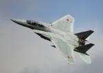new_2106さんが、岐阜基地で撮影した航空自衛隊 F-15DJ Eagleの航空フォト(写真)