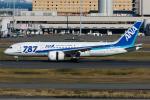 Tomo-Papaさんが、羽田空港で撮影した全日空 787-8 Dreamlinerの航空フォト(写真)