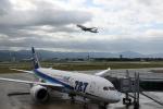 わかすぎさんが、小松空港で撮影した全日空 787-8 Dreamlinerの航空フォト(写真)