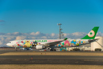 Cygnus00さんが、新千歳空港で撮影したエバー航空 A330-302Xの航空フォト(写真)