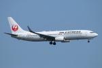 ceskykrumlovさんが、羽田空港で撮影したJALエクスプレス 737-846の航空フォト(写真)