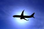 プッチさんが、熊本空港で撮影した日本航空 737-846の航空フォト(写真)