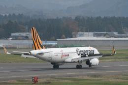daisuke.aさんが、花巻空港で撮影したタイガーエア 台湾 A320-232の航空フォト(写真)