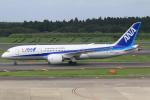 テクノジャンボさんが、成田国際空港で撮影した全日空 787-8 Dreamlinerの航空フォト(写真)