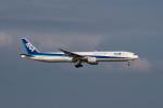 ポン太さんが、羽田空港で撮影した全日空 777-381の航空フォト(写真)