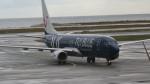 twinengineさんが、ニース・コートダジュール空港で撮影したトゥイフライ 737-8K5の航空フォト(飛行機 写真・画像)