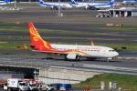 たまさんが、羽田空港で撮影した海南航空 737-84Pの航空フォト(写真)