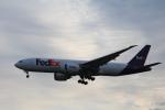 msrwさんが、成田国際空港で撮影したフェデックス・エクスプレス 777-FHTの航空フォト(写真)