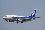 蒲田賢二さんが、新潟空港で撮影したANAウイングス 737-54Kの航空フォト(写真)