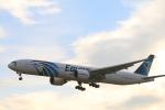 msrwさんが、成田国際空港で撮影したエジプト航空 777-36N/ERの航空フォト(写真)
