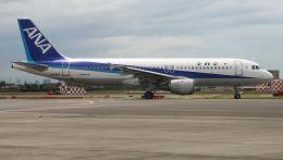 cathay451さんが、伊丹空港で撮影した全日空 A320-211の航空フォト(飛行機 写真・画像)