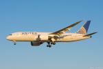 ぱん_くまさんが、成田国際空港で撮影したユナイテッド航空 787-8 Dreamlinerの航空フォト(写真)