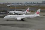 よしポンさんが、羽田空港で撮影した日本航空 787-8 Dreamlinerの航空フォト(写真)