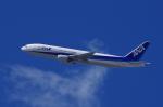 mild lifeさんが、伊丹空港で撮影した全日空 777-281の航空フォト(写真)