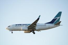 ウェストジェット Boeing 737-700 C-FGWJ バンクーバー国際空港  航空フォト | by YVR777-300ERさん