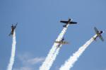 チャッピー・シミズさんが、ネリス空軍基地で撮影したWEBB ANDREW B MURRIETA , CA, US Yak-52の航空フォト(写真)