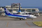 はるかのパパさんが、新石垣空港で撮影したANAウイングス 737-5L9の航空フォト(写真)