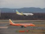 さゆりんごさんが、新千歳空港で撮影したAIR DO 737-781の航空フォト(写真)