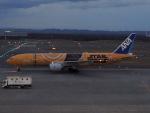 さゆりんごさんが、新千歳空港で撮影した全日空 777-281/ERの航空フォト(写真)